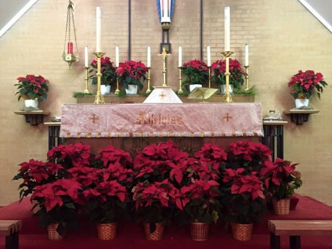 Alleluia altar at Christmas